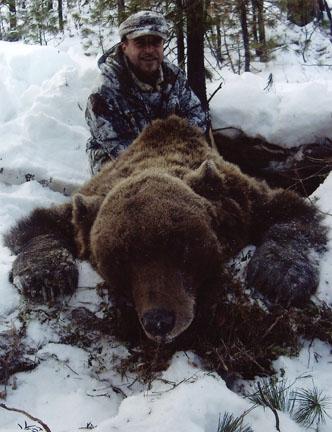 siberian bear hunting dog
