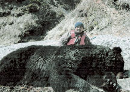 Ussuri Brown Bear Vs Grizzly Manchurian (U. a. lasi...