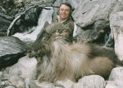Sample Photo for Himalayan Tahr