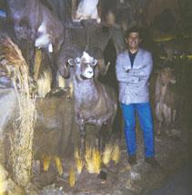 Хуссейн Голабчи  с рекордным трофеем камчатского снежного барана. Фото с www.scirecordbook.org