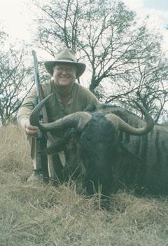 Sample Photo for Blue Wildebeest