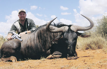 Sample Photo for Blue Wildebeest