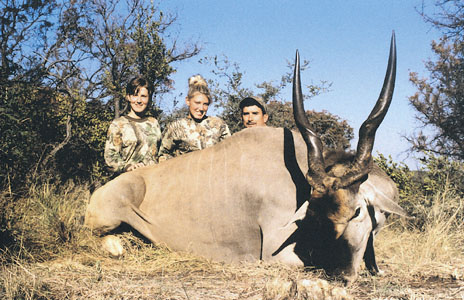 Sample Photo for Cape Eland