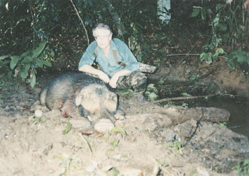 Sample Photo for Giant Forest Hog
