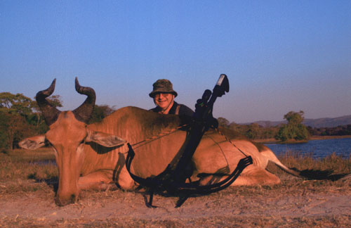 Sample Photo for Lichtenstein Hartebeest
