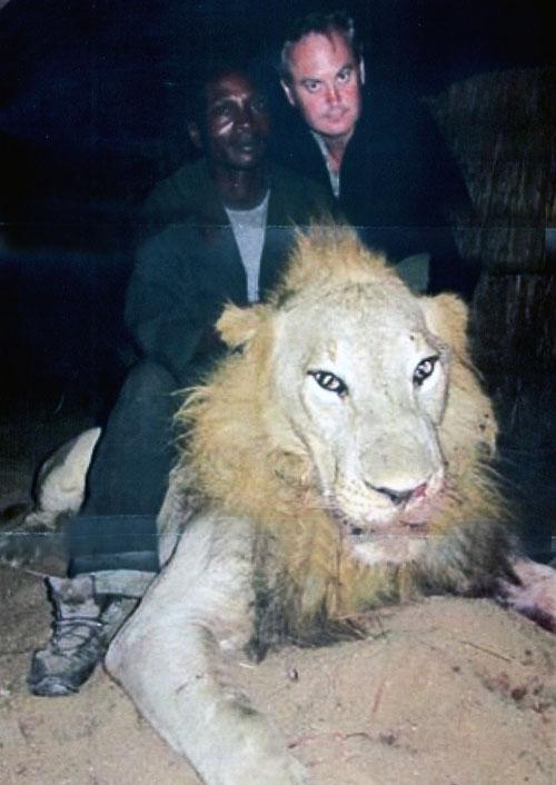 Angus Murray с рекордным трофеем африканского льва.Фото www..scirecordbook.org