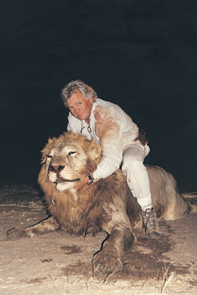 Sample Photo for African Lion