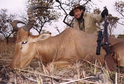 Sample Photo for Western Hartebeest