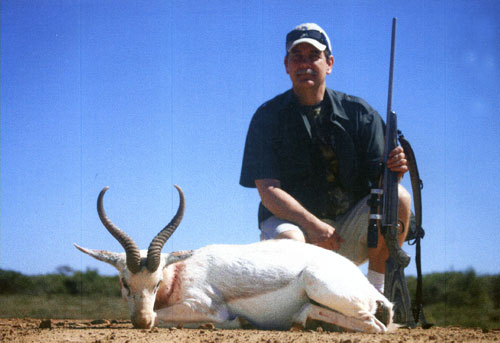 Sample Photo for White Springbok