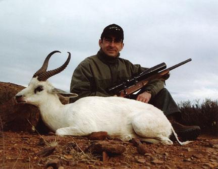Sample Photo for White Springbok