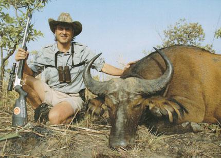 Sample Photo for West African Savanna Buffalo