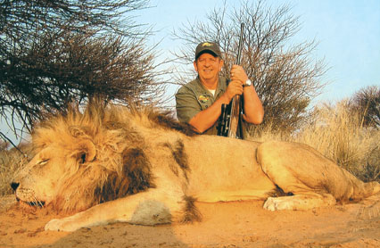 Sample Photo for African Lion (South Africa & Namibia)