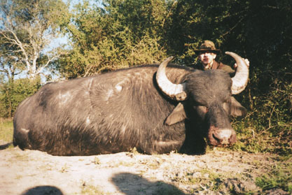 Sample Photo for Water Buffalo (estate)