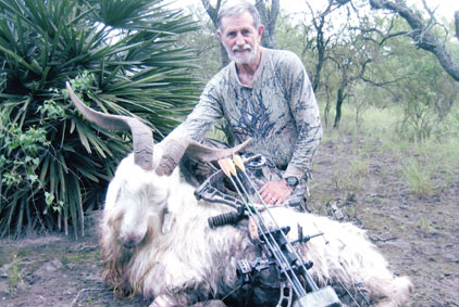 Sample Photo for Feral Goat (estate)