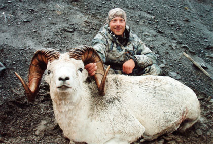 Sample Photo for Dall Sheep
