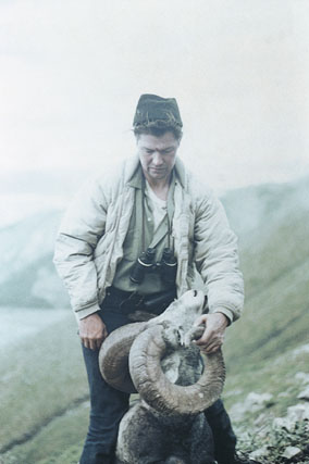 Sample Photo for Stone Sheep