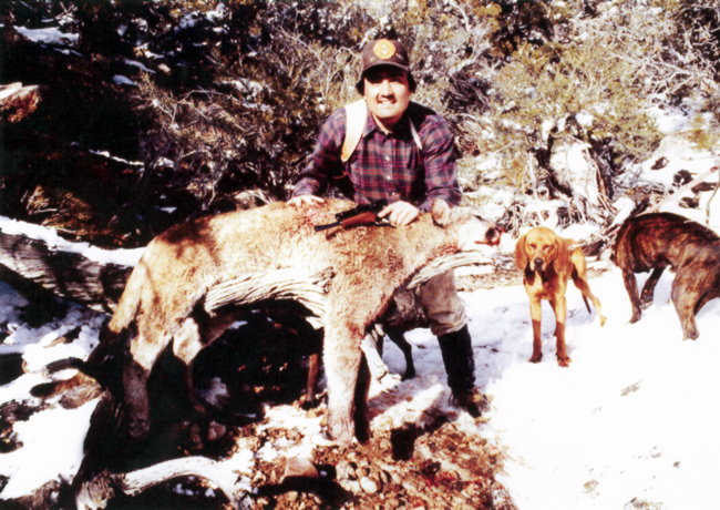 Sample Photo for Cougar or Mountain Lion