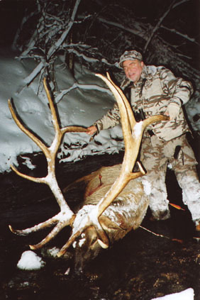 Sample Photo for Rocky Mountain Elk (typical)(estate)