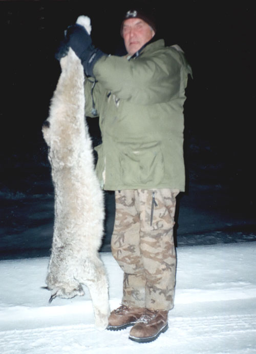 Sample Photo for Canada Lynx
