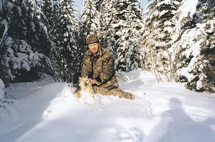 Sample Photo for Canada Lynx
