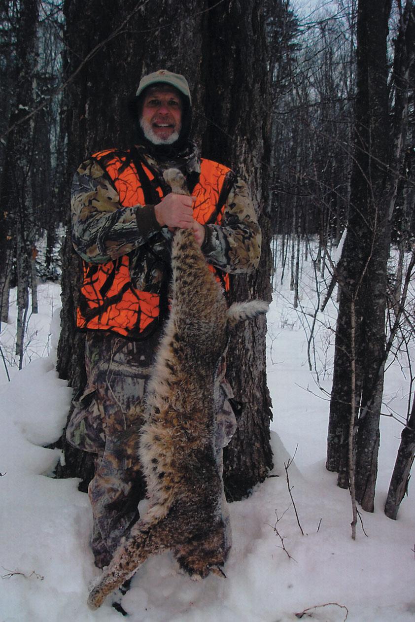 Sample Photo for Bobcat