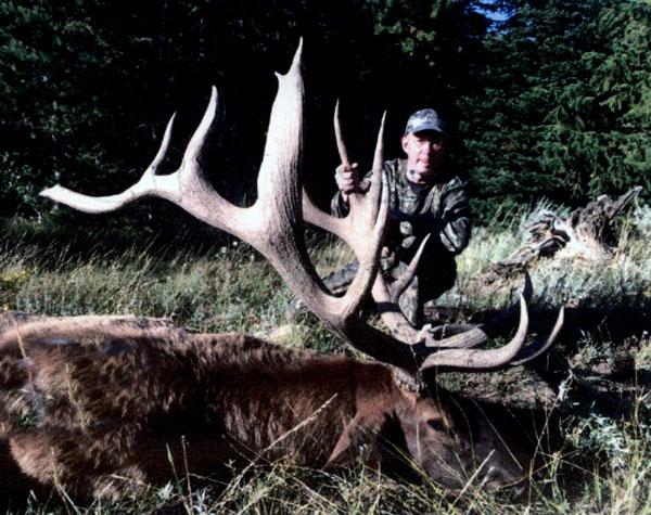 Sample Photo for Rocky Mountain Elk (non-typical)