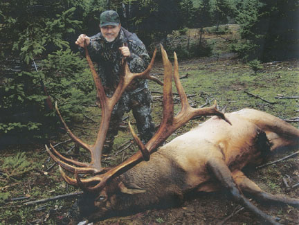 Sample Photo for Rocky Mountain Elk (non-typical)(estate)