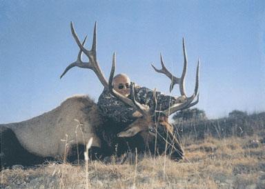 Sample Photo for Rocky Mountain Elk (non-typical)(estate)
