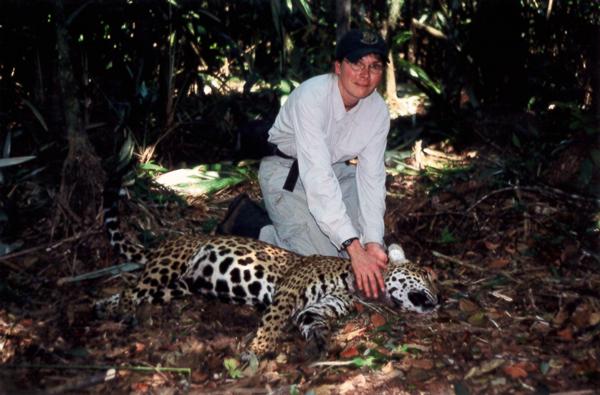 Sample Photo for Jaguar (darted)