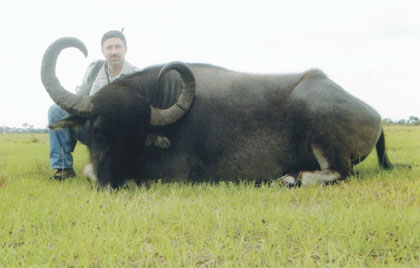 Sample Photo for Water Buffalo