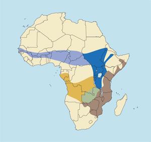 East African Defassa Waterbuck