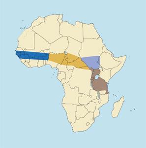 Sudan Bohor Reedbuck